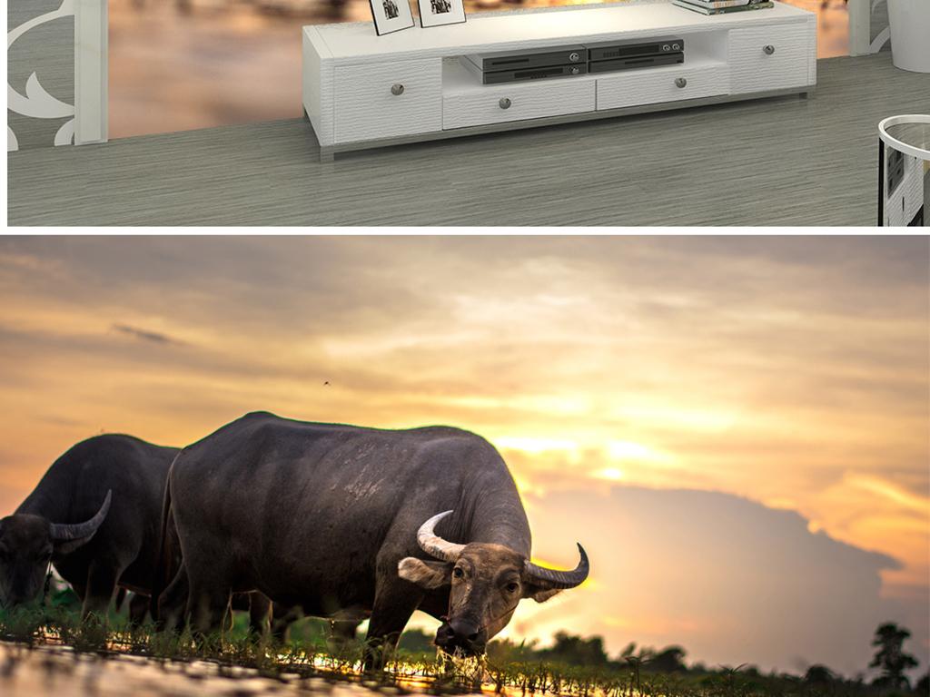 高清南亚水牛唯美图片设计素材 模板下载 20.73mb 电视背景墙大全