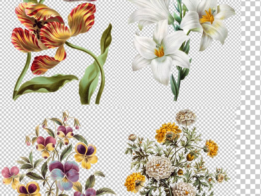 花卉素材手绘花卉印花图案