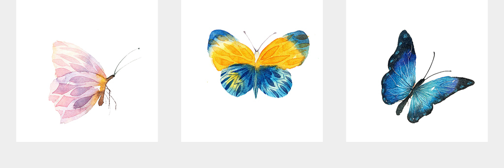 蝴蝶彩色蝴蝶手绘蝴蝶设计素材