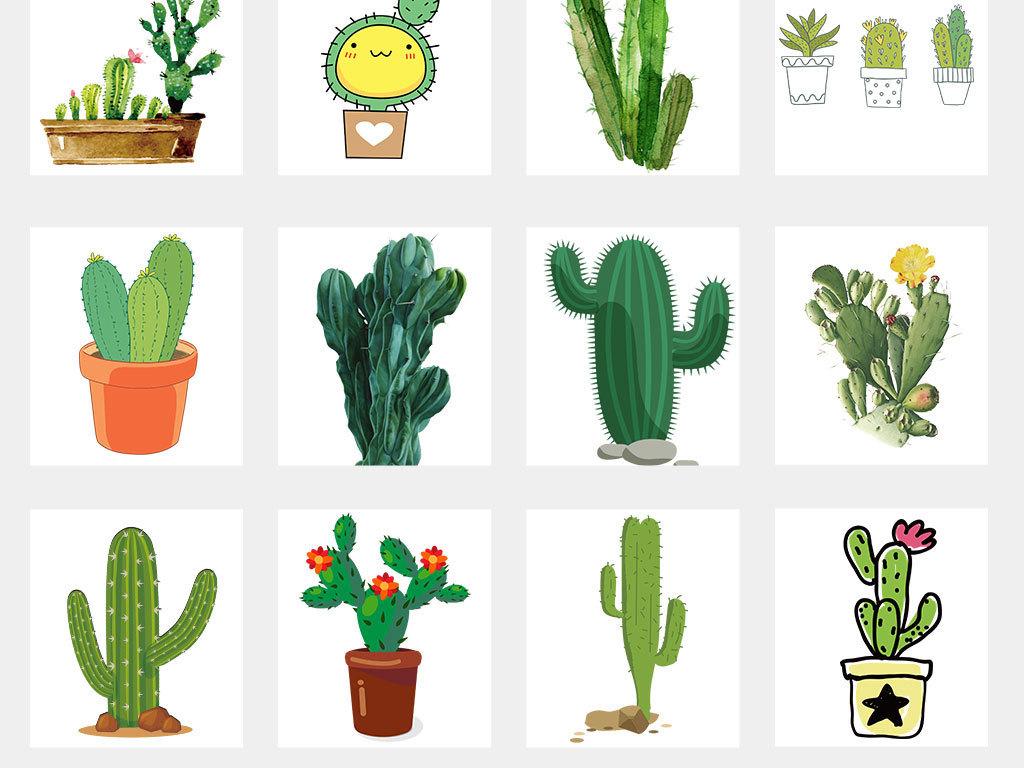 黑白植物手绘植物画框图案手机壳水杯抱枕日常用品图案夏季素材热带