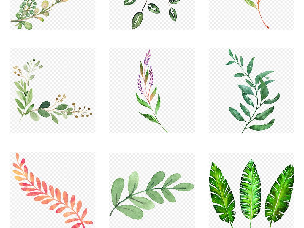 北欧小清新手绘插画水彩绿植png设计素材