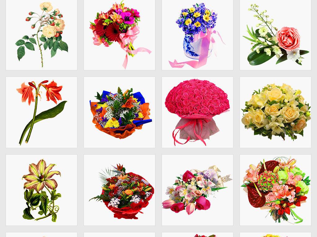 独立png/手绘水彩植物花卉婚礼设计元素