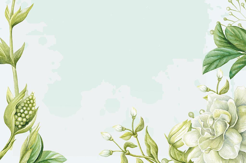 小报手抄报素材模板模板儿童信笺纸小学文章边框春季春天信纸踏青春游