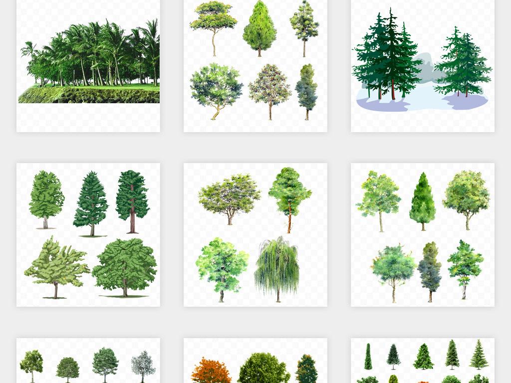 卡通手绘树木树林森林灌木丛png免扣素材