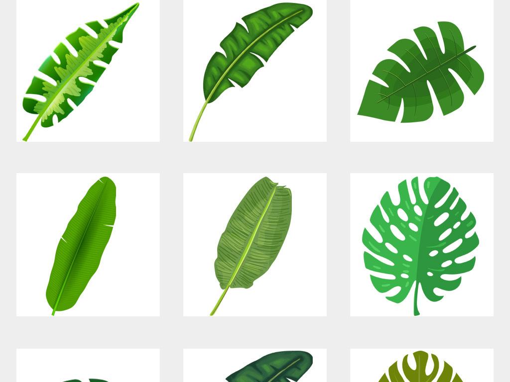北欧小清新美式手绘插画水彩树叶绿植png设计素材