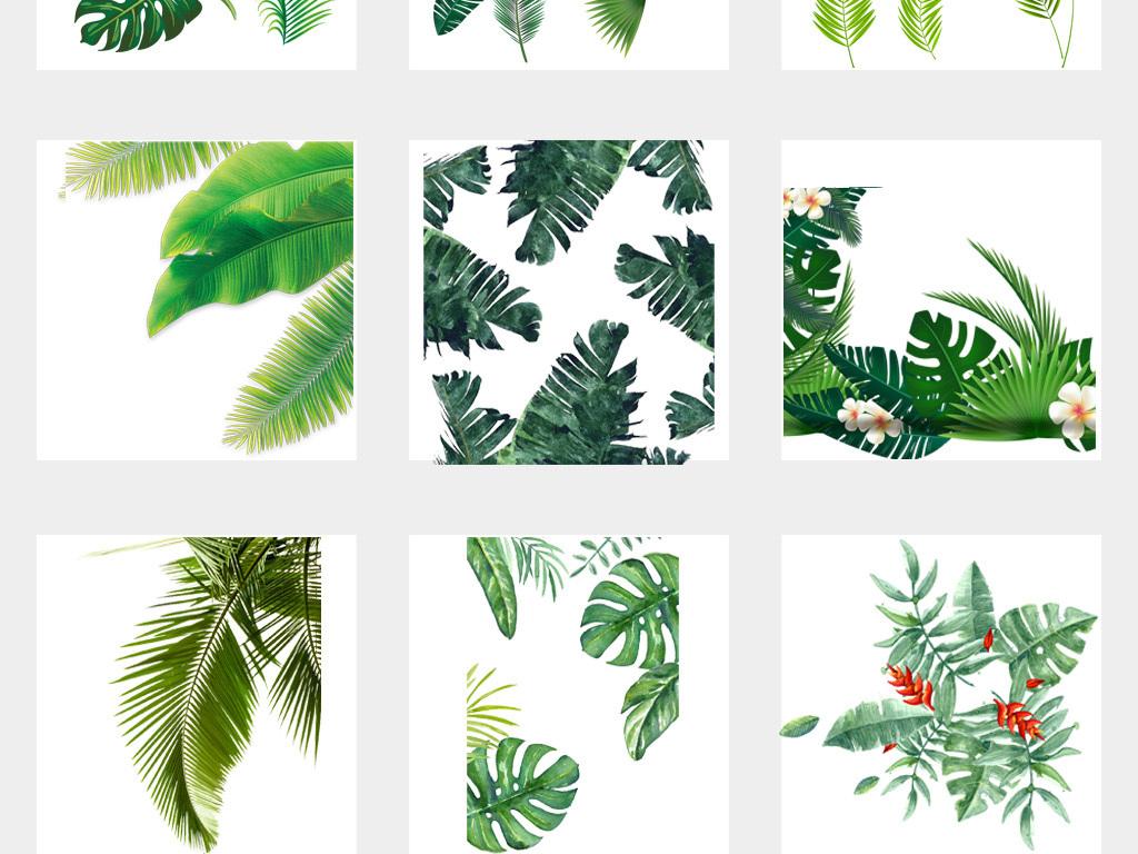 北欧小清新美式手绘插画水彩树叶绿植png设计素材02