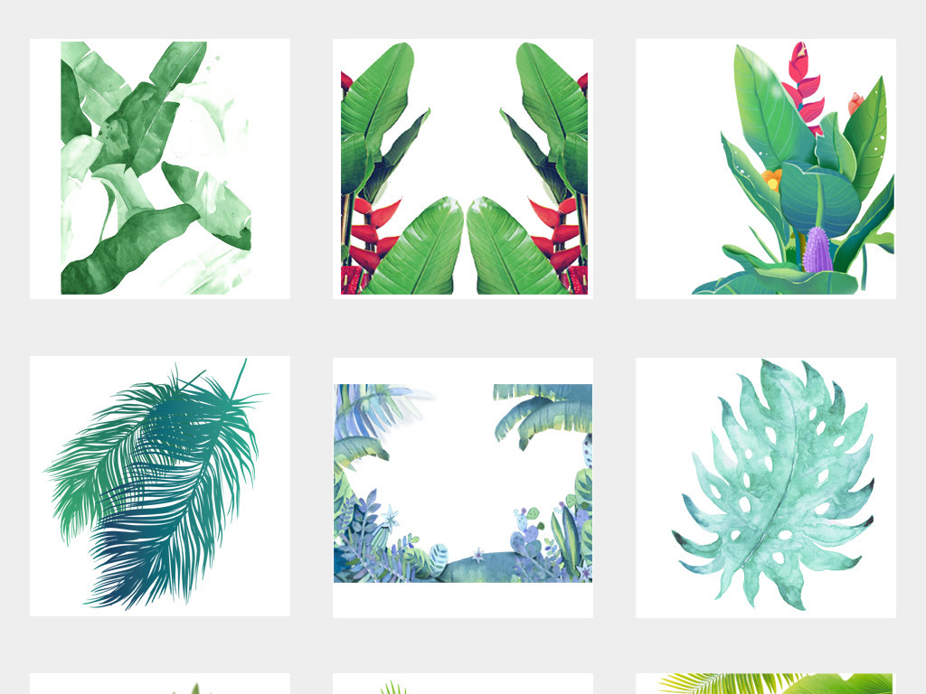 北欧小清新美式手绘插画水彩树叶绿植png设计素材03