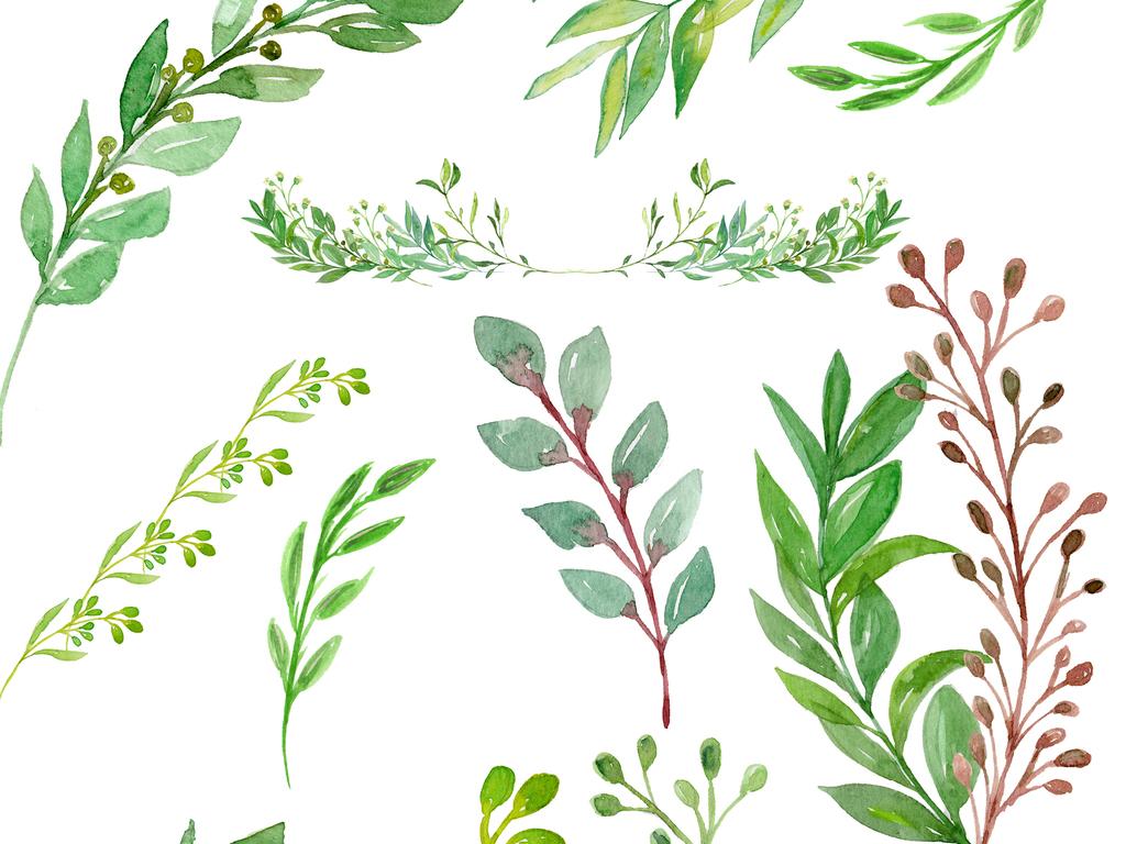 北欧小清新美式手绘插画水彩绿植设素材