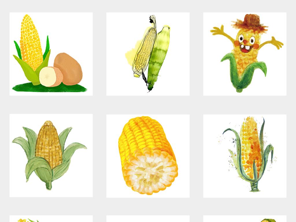 多款水彩手绘黄金玉米玉米粒苞米苞谷png素材