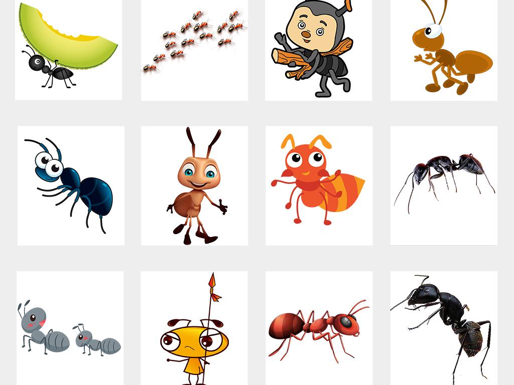 可爱卡通蚂蚁动物图片海报png免抠素材