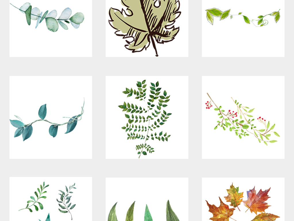 各类手绘树叶枫叶银杏叶水彩绿色叶子png免扣素材
