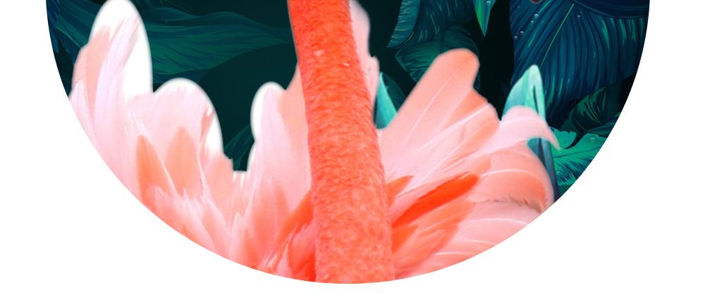 手绘热带雨林火烈鸟无框画图片设计素材_高清psd模板