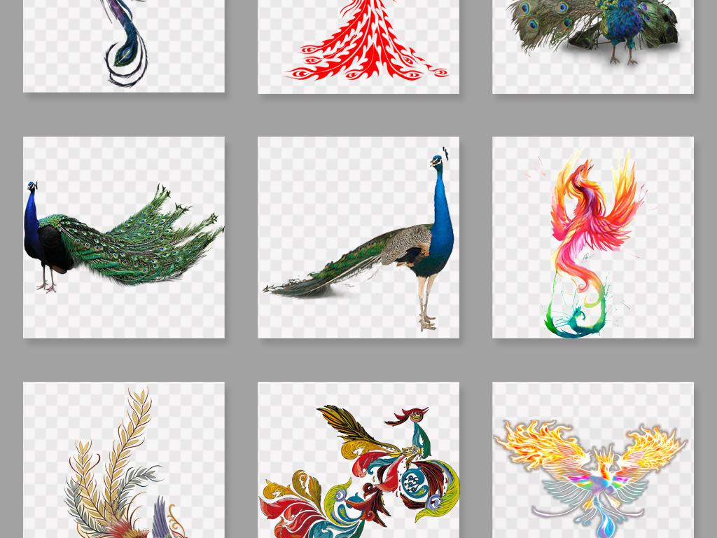 设计元素 自然素材 动物 > 唯美孔雀png透明背景免扣素材  素材图片