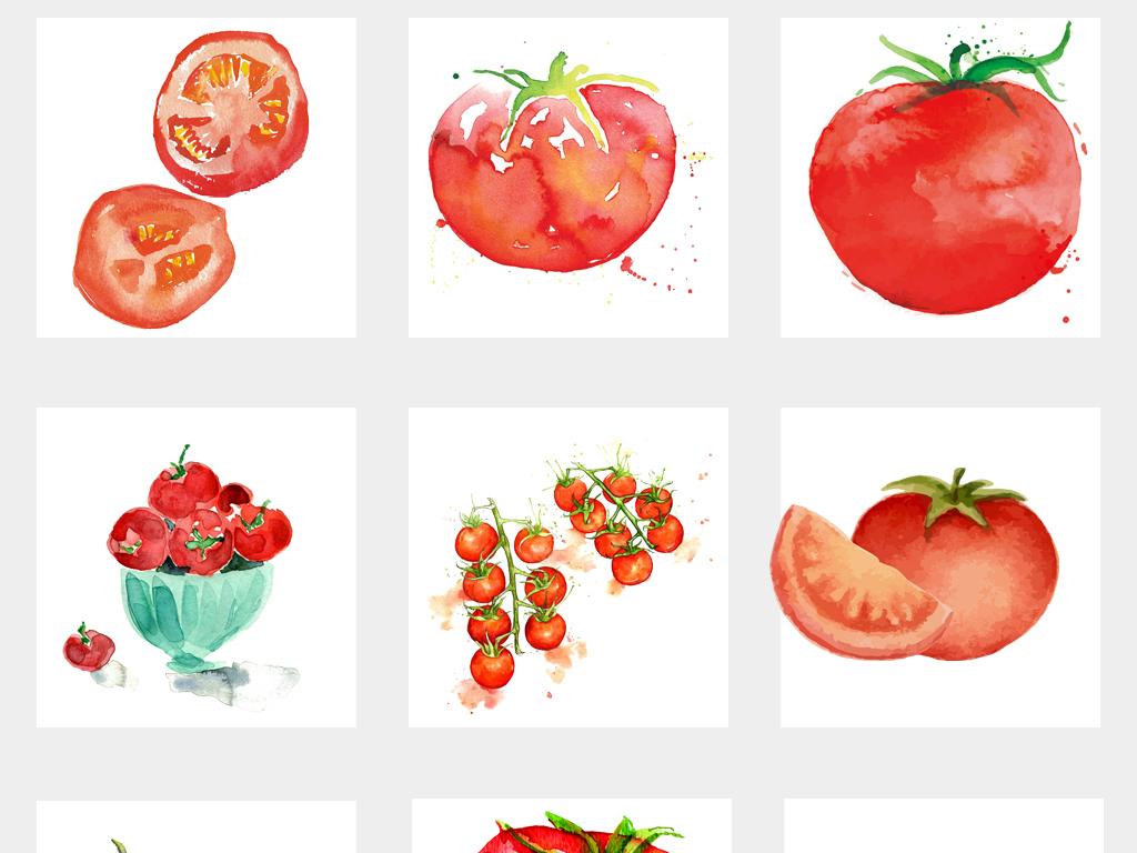 卡通可爱果蔬红色番茄手绘水彩西红柿png免扣素材