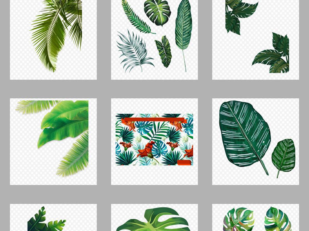 北欧小清新美式手绘插画水彩绿植