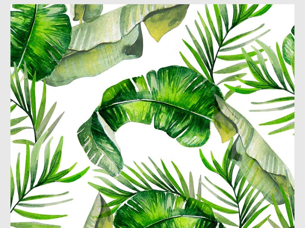 森系手绘水彩花鸟绿色植物棕榈芭蕉叶素材