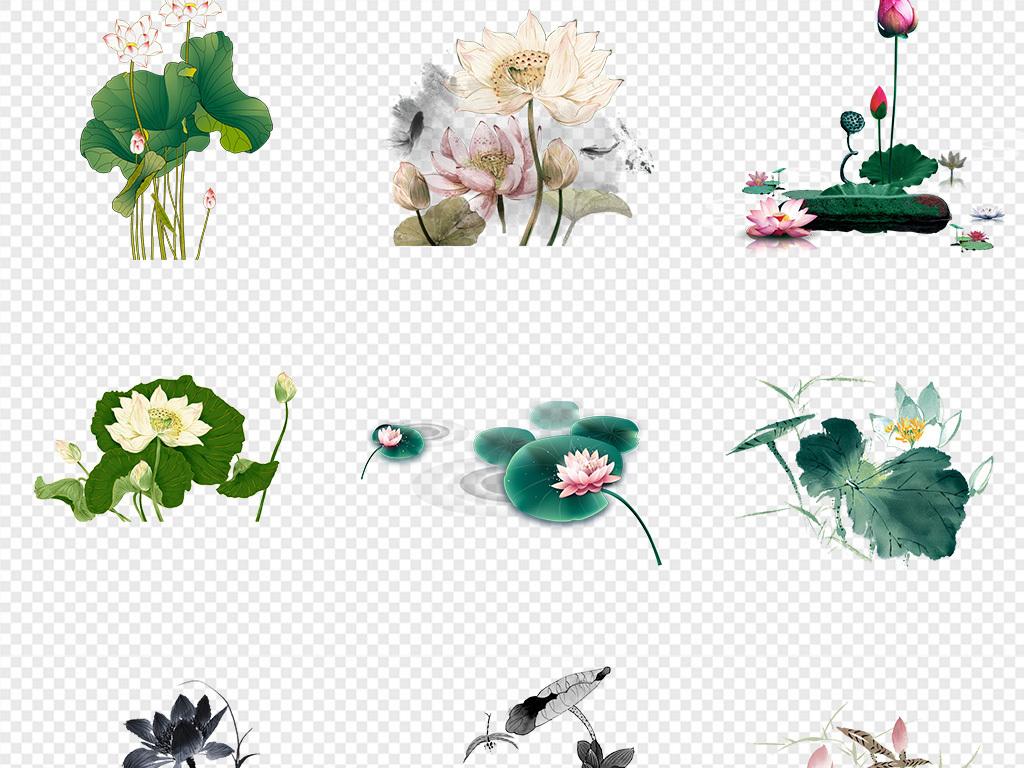简笔画花朵-50款手绘水墨荷花荷叶图片背景PNG素材