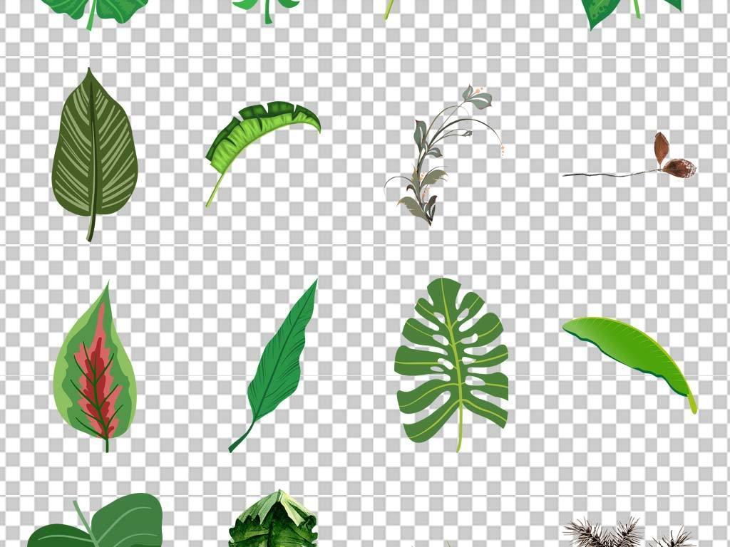 一片绿叶绿叶植物底纹绿叶ps素材绿色漂浮