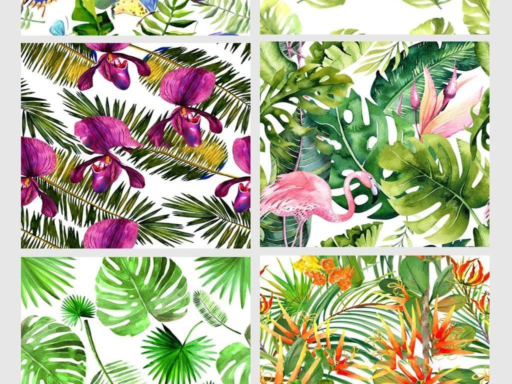 小清新手绘植物叶子花卉热带植物素材