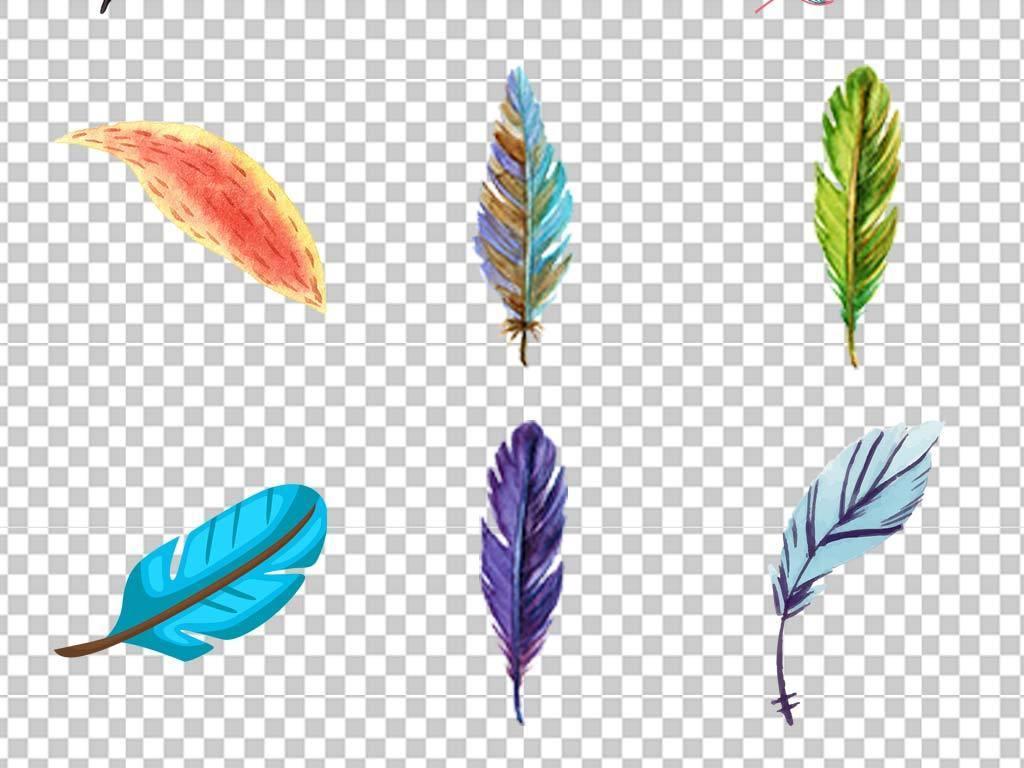 北欧唯美手绘水彩羽毛鸟窝树枝干枝png素材