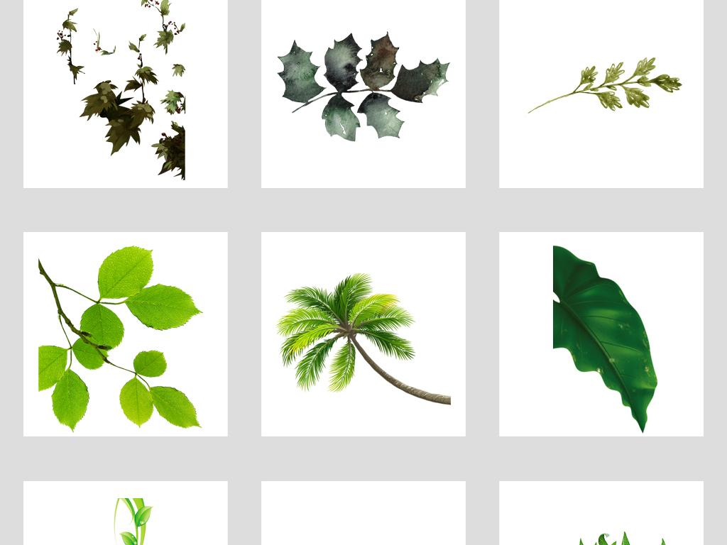树叶飞舞叶子图片绿叶水滴水珠绿叶树枝一片绿叶绿叶植物底纹绿色漂浮