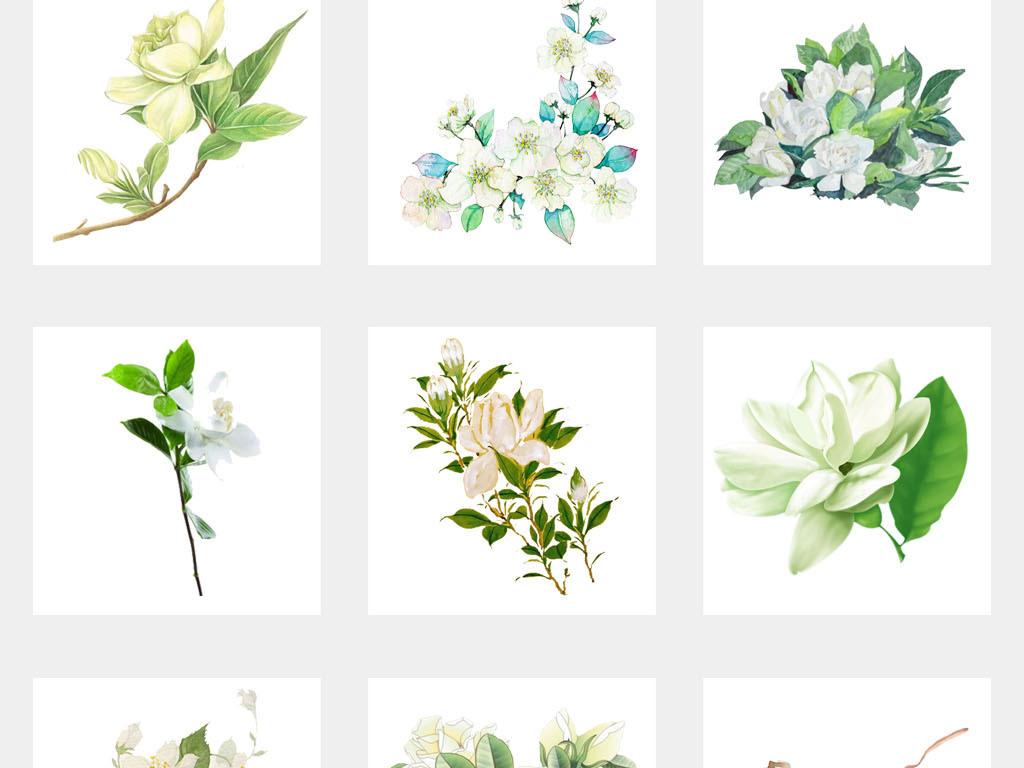 栀子花卡通盆栽植物鲜花店海报png素材