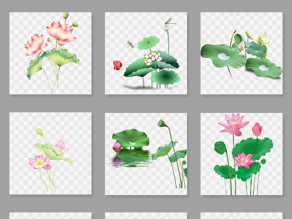 简笔画花朵-1.45MB 花卉大全 自然