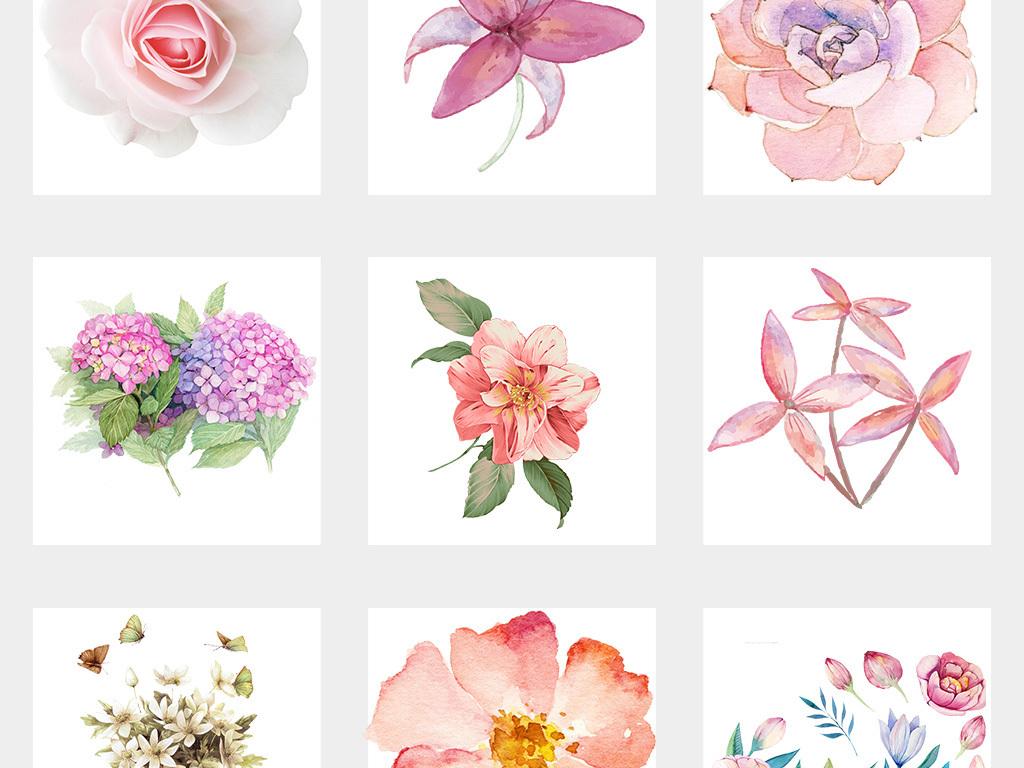 卡通手绘植物花朵装饰品png元素