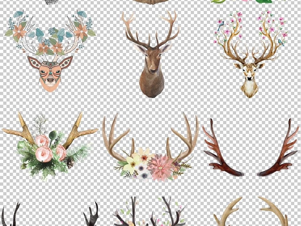 卡通手绘鹿角插画麋鹿鹿头装饰画png透明素材