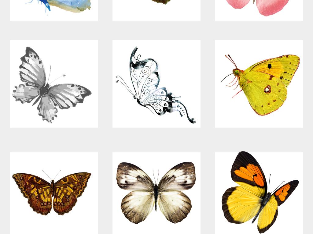 唯美手绘彩色蝴蝶飞舞png透明背景素材