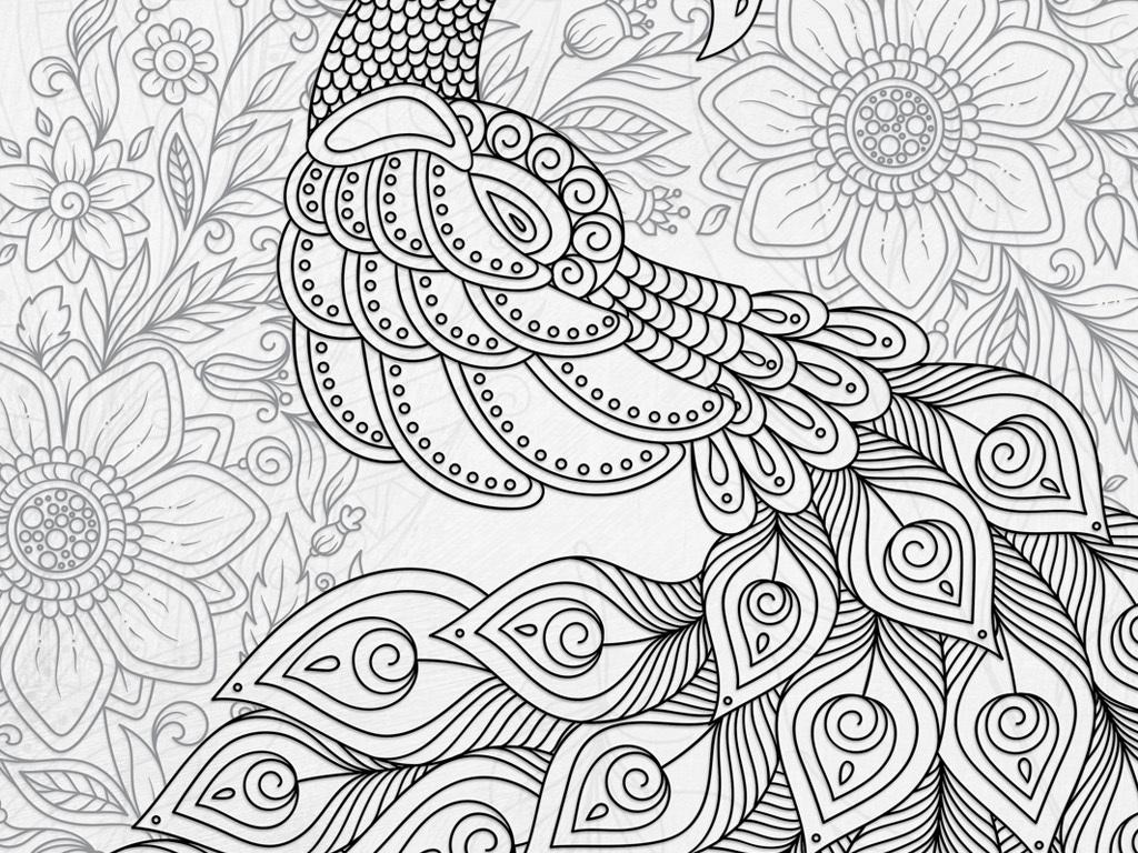 黑白孔雀复古欧式简约装饰画