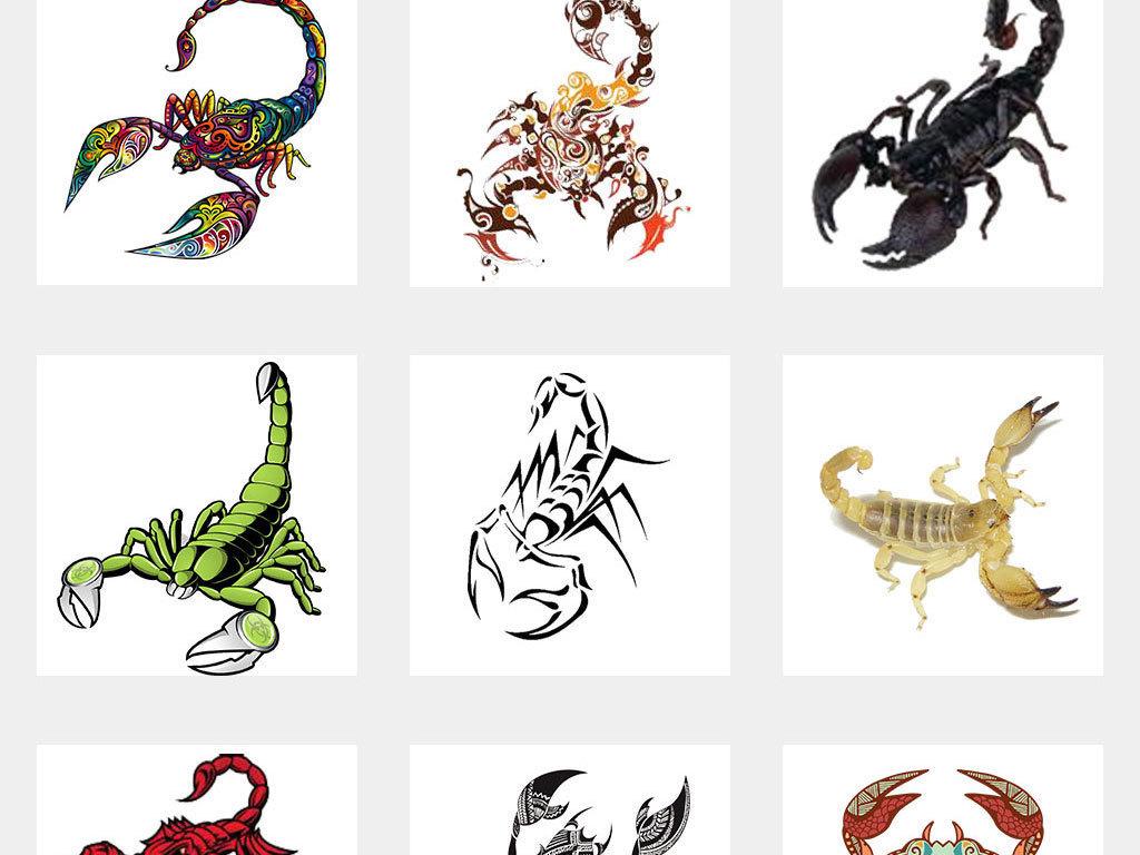 可爱卡通蝎子手绘动物蝎子素材png元素
