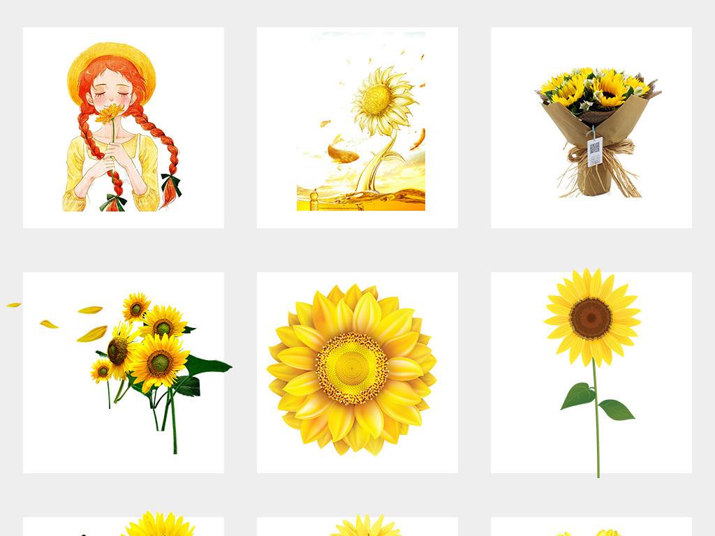 卡通手绘向日葵太阳花背景png素材