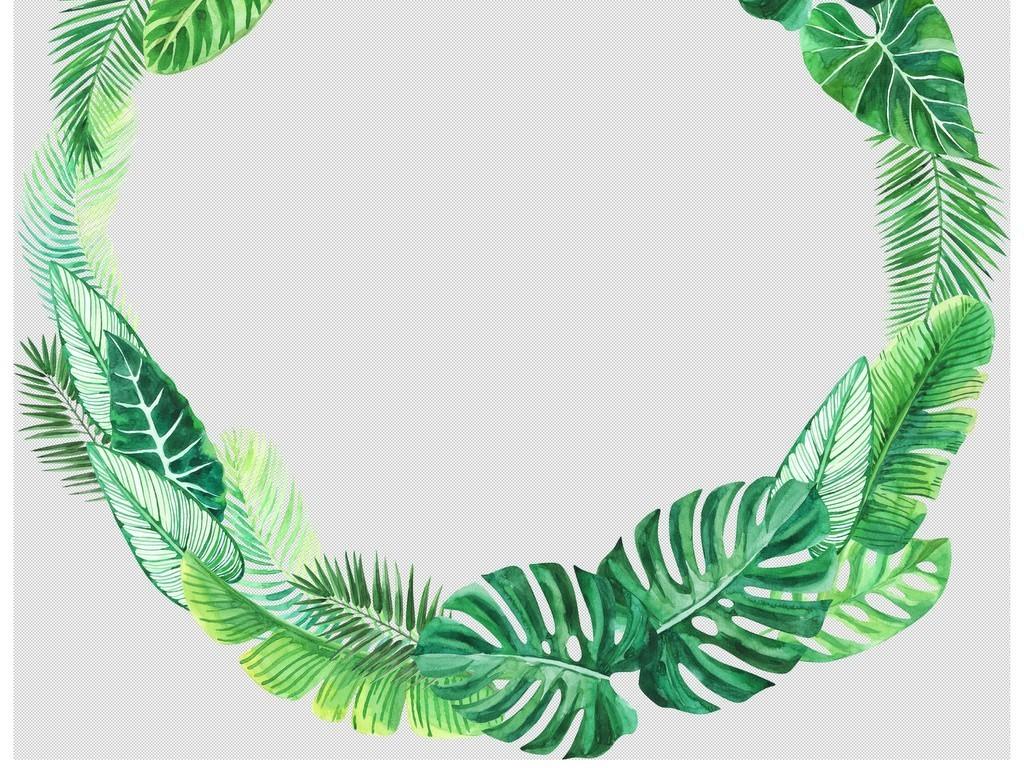 手绘水彩热带植物树叶棕榈龟背叶png素材