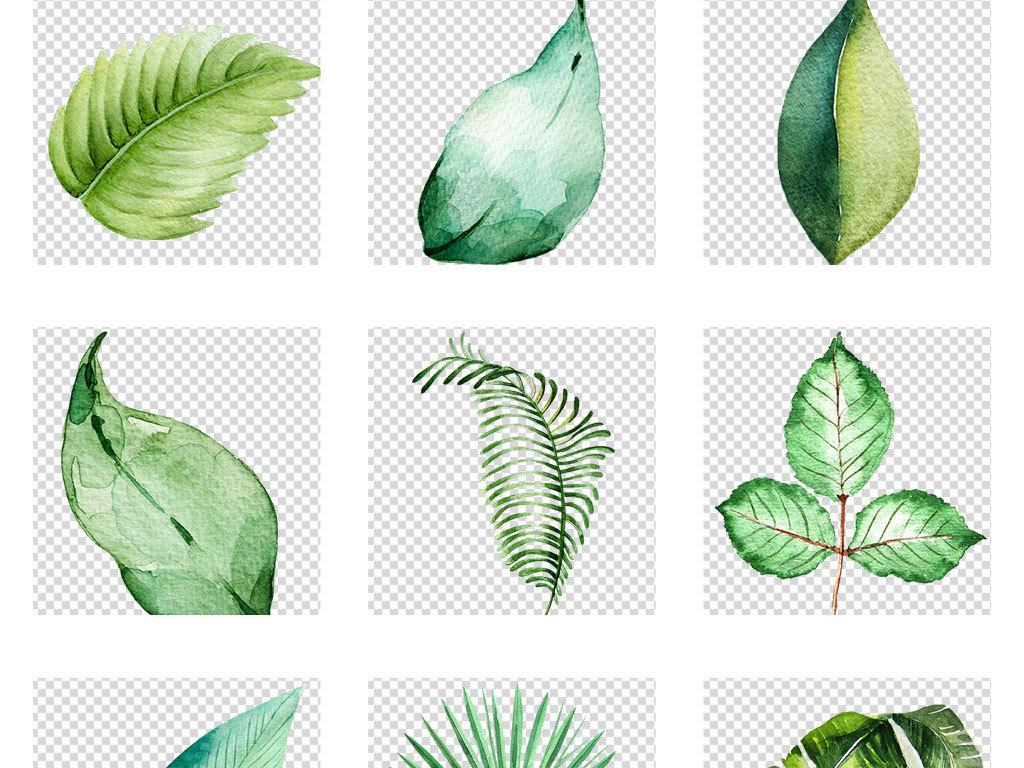 设计元素 自然素材 树叶 > 创意手绘水彩叶子春夏绿色免扣透明png图片