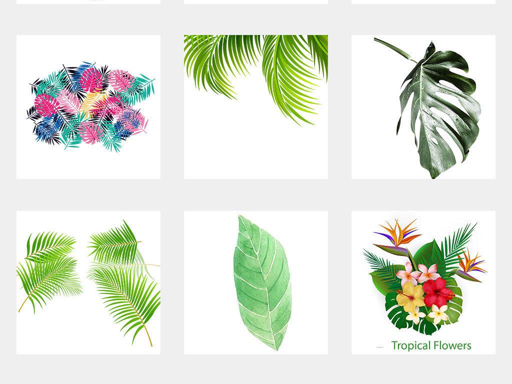 森系北欧热带雨林手绘水彩树叶绿植设计素材
