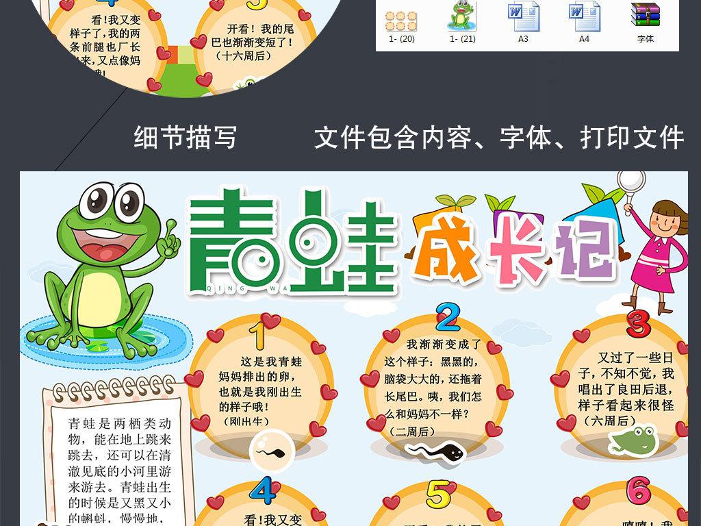 word观察日记青蛙成长记小报动物生长过程手抄小报素材