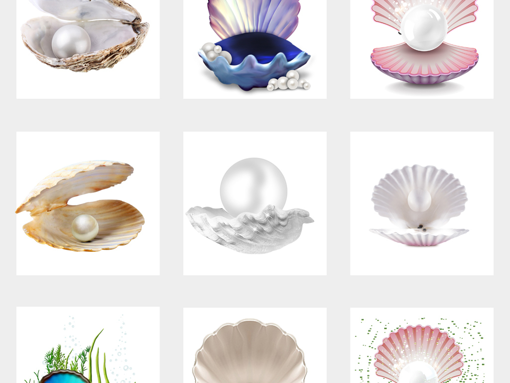 唯美海边沙滩手绘贝壳png透明背景免扣素材