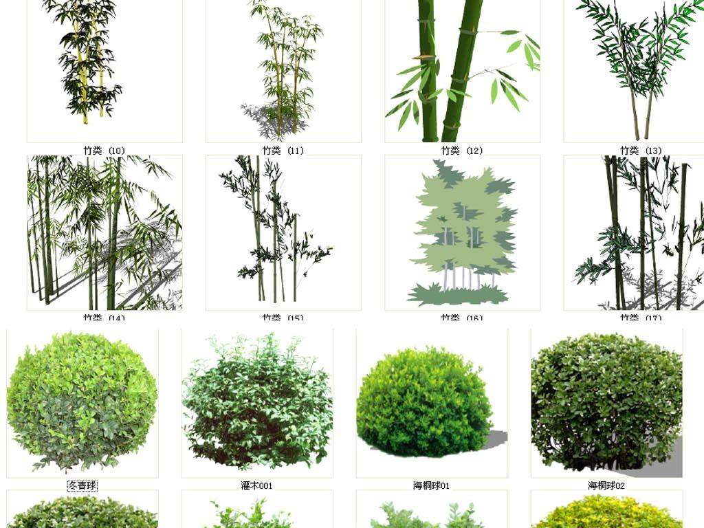 绿化植物素材模型