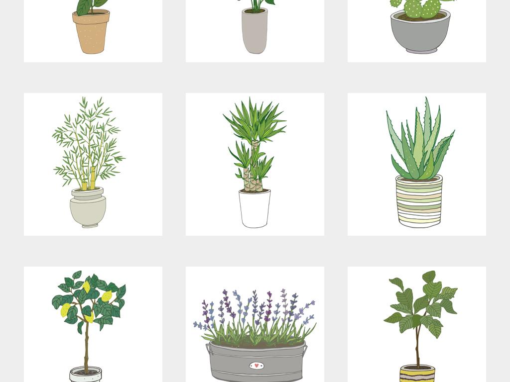 北欧简约手绘彩色清新绿色植物多肉龟背竹盆栽png素材