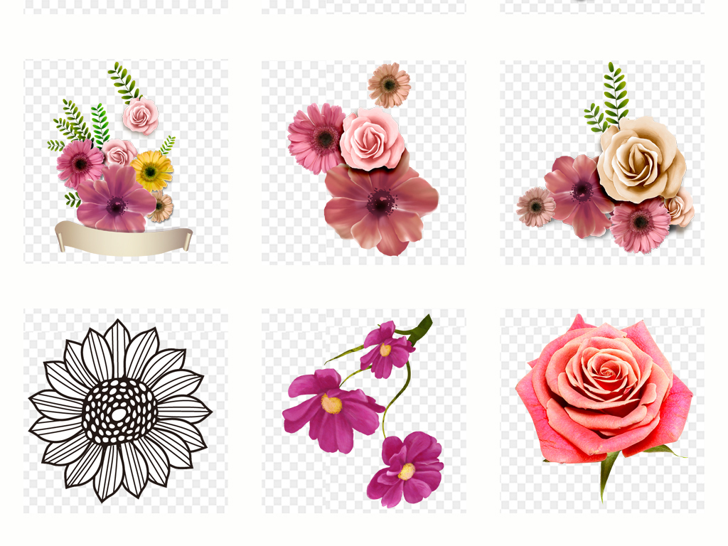 手绘花朵线条花卉植物png免扣素材