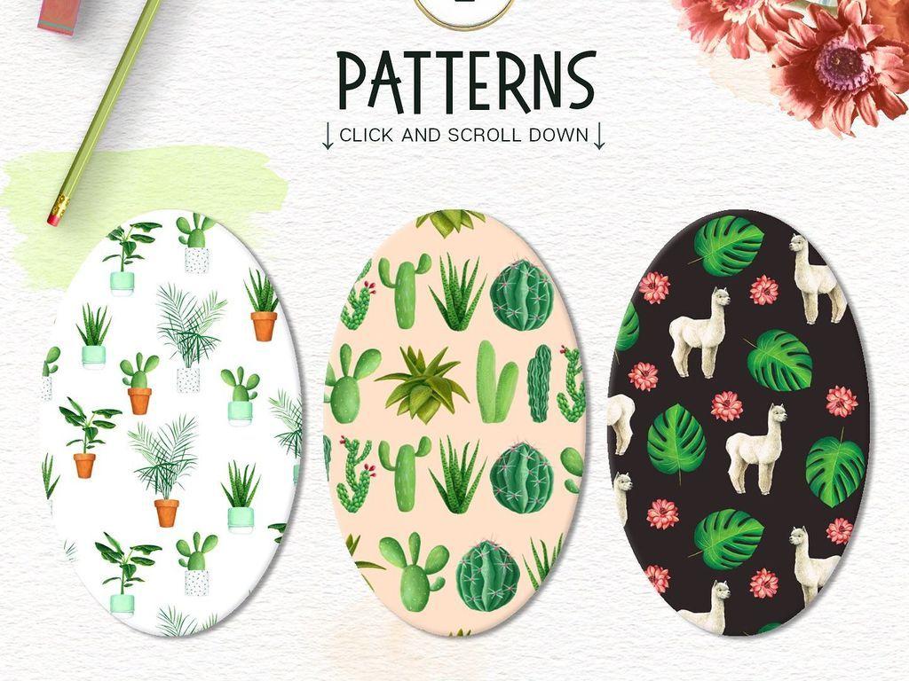 文艺小清新手绘植物仙人掌动物png素材
