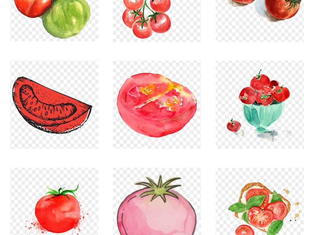 新鲜手绘水彩果蔬西红柿蔬菜海报png素材