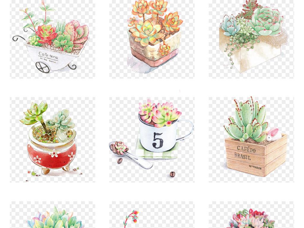 可爱手绘水彩多肉植物小清新多肉盆栽png免扣素材图片