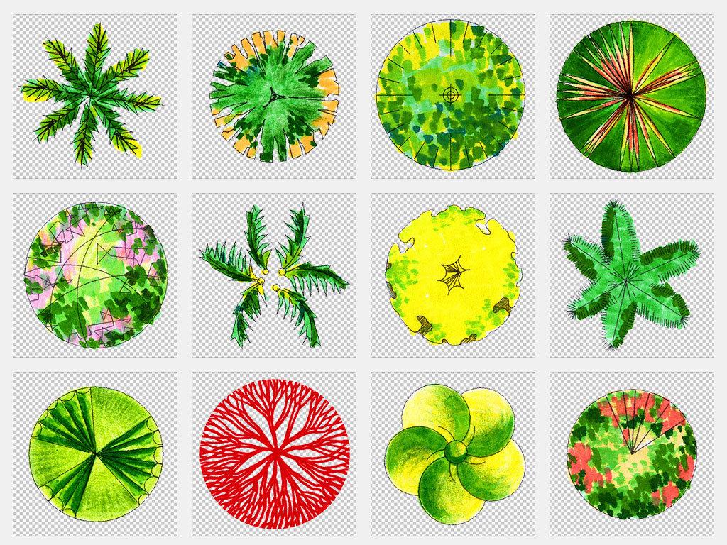 独立png/景观效果图平面手绘植物俯视