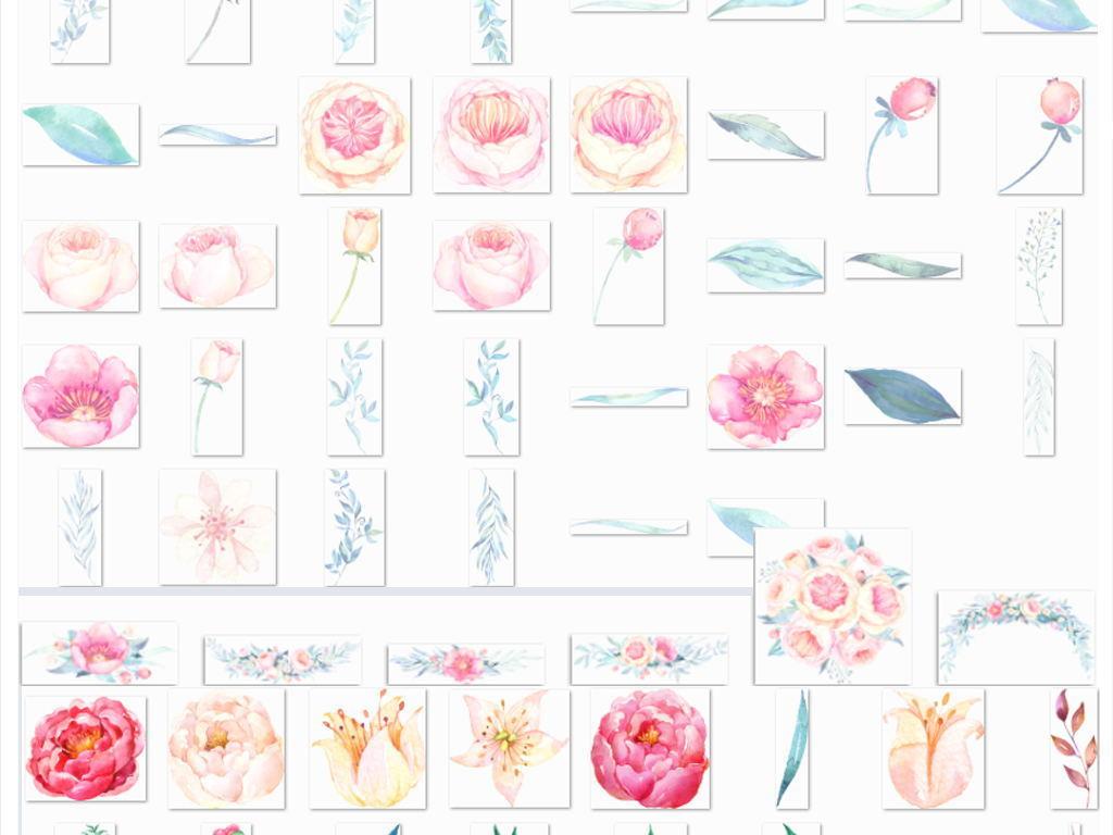 北欧小清新美式手绘插画水彩花朵绿植png素材