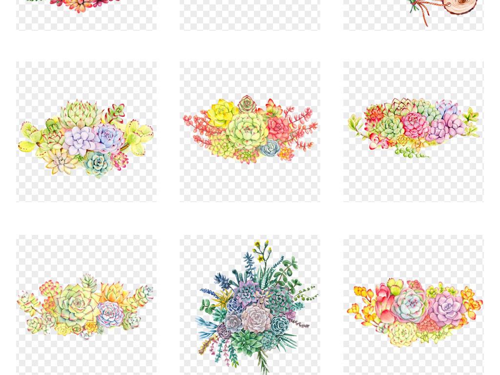 50款卡通手绘多肉植物边框多肉花卉装饰png素材