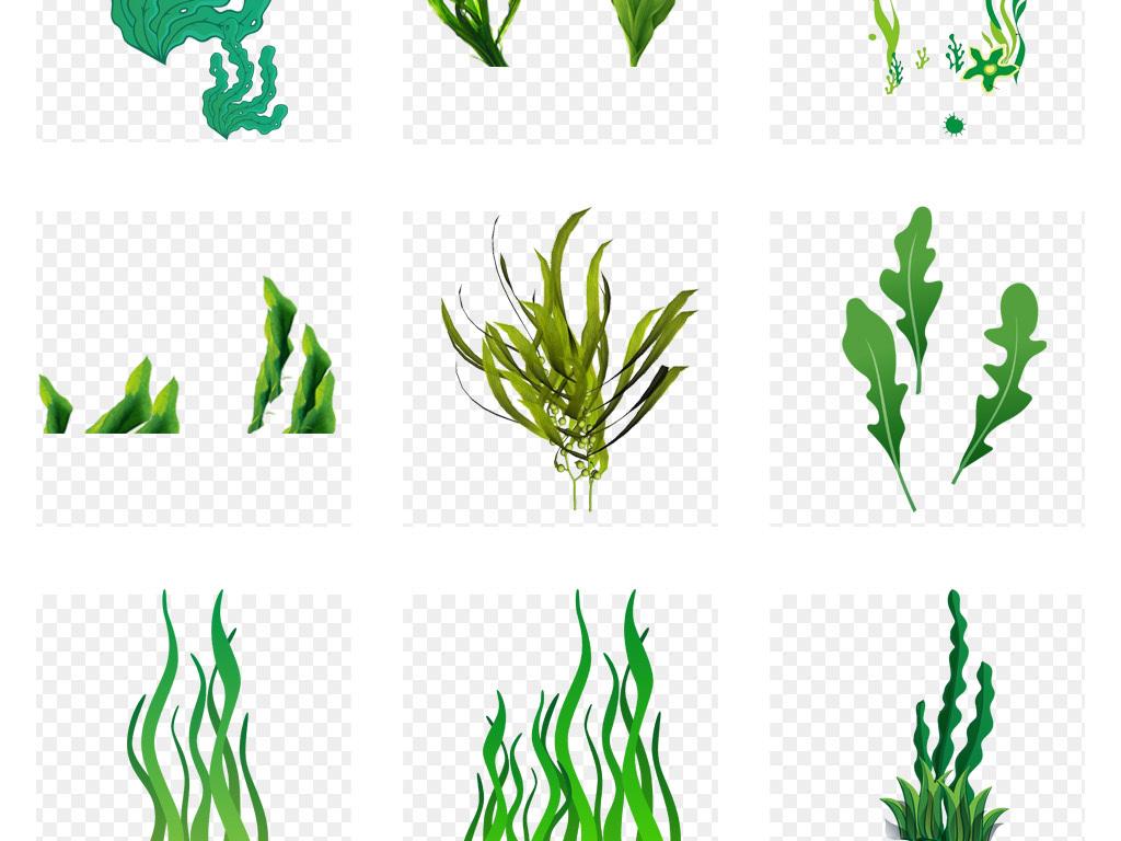 50款创意卡通手绘海底植物海草海藻珊瑚png素材