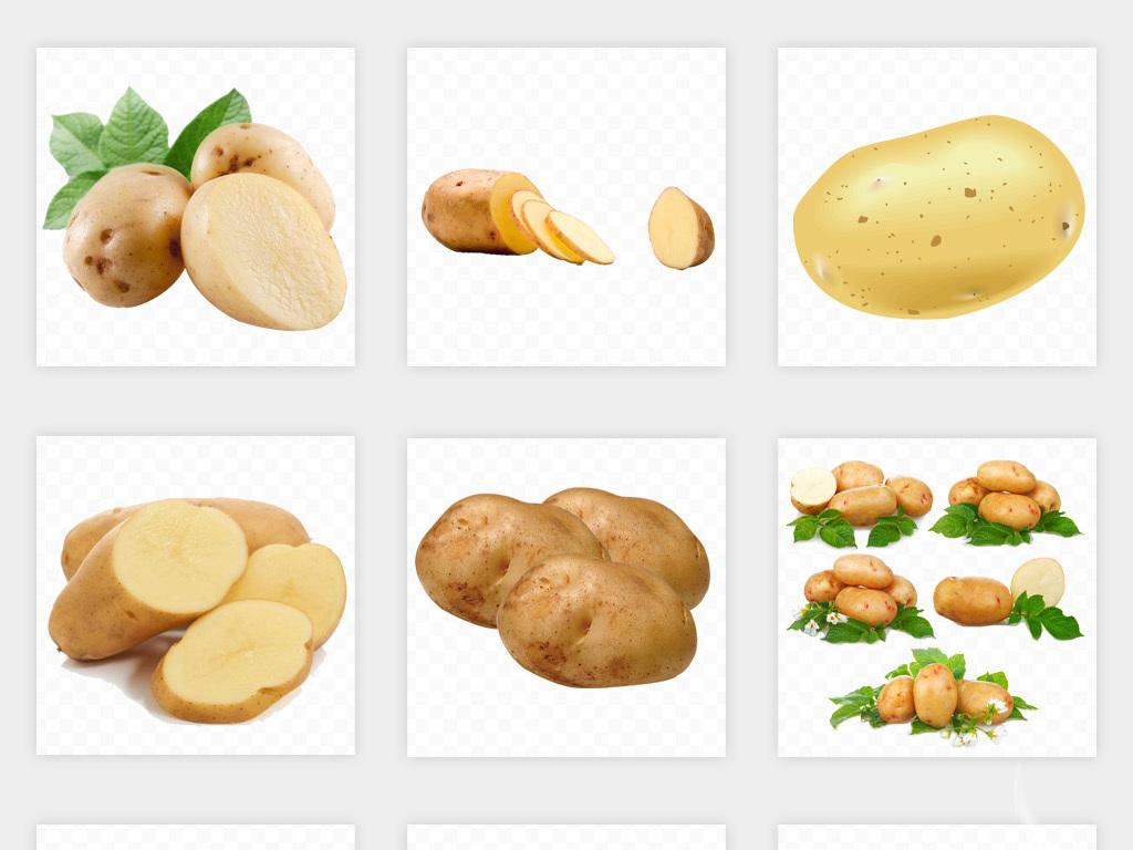 卡通手绘有机食材马铃薯土豆海报png免扣素材