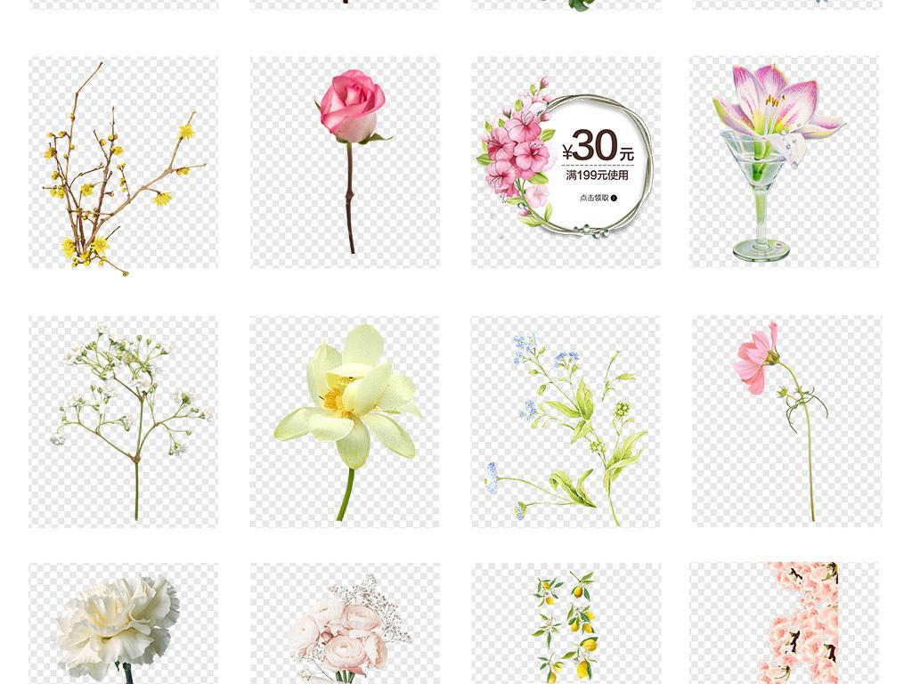 卡通彩色手绘小花花草花卉植物png素材